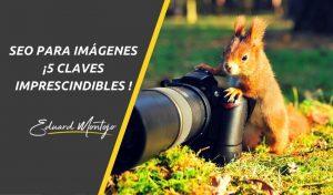 SEO para imágenes, posiciona tus imágenes en Google