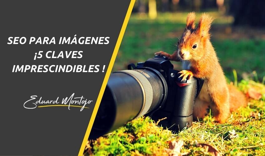 SEO para imágenes ¡5 claves imprescindibles para la optimización!